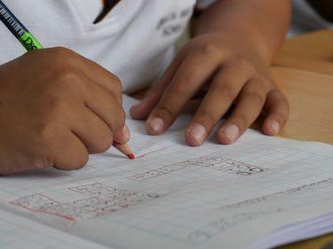 全国統一小学生テストの傾向と対策【偏差値65~70超を取る勉強方法】